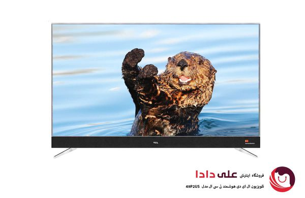 TCL 49P2US tv